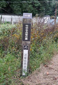 2015-09-25_151935.jpg