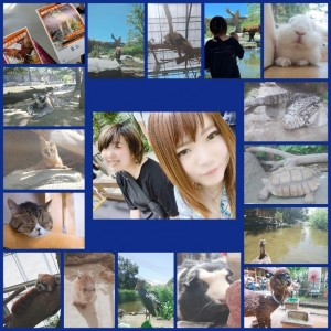 CollageMaker_20190805_215414.jpg